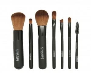 Brush Essentials-Kit2-300x240